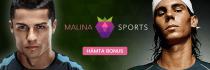 Malina Sport banner